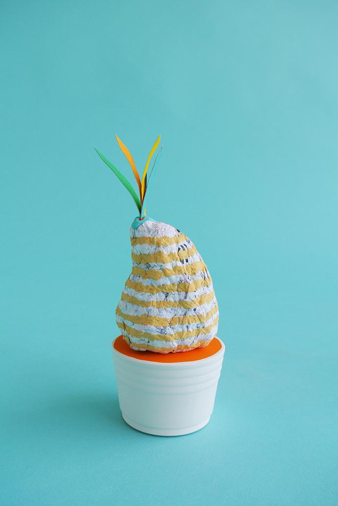 02_Lump Nubbin_Garden Stone Cactus
