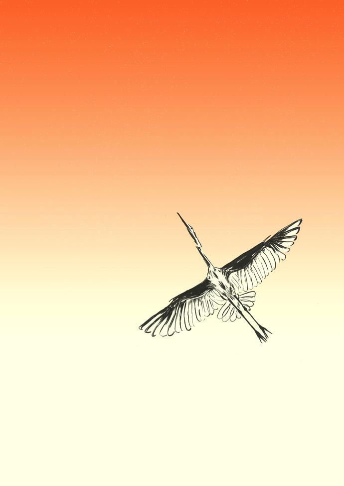 Ishaarah_Bird