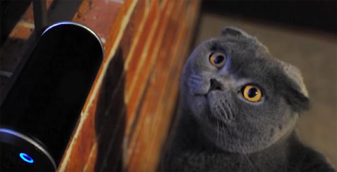 POTW-CATS