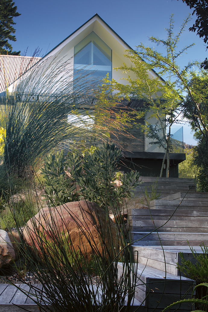 Landscape architect Tarna Klitzner collaborated with architect Bert Pepler on the garden renovation. Stairs and a path now link the split-level garden, which features a natural green belt and a seasonal stream below the house.