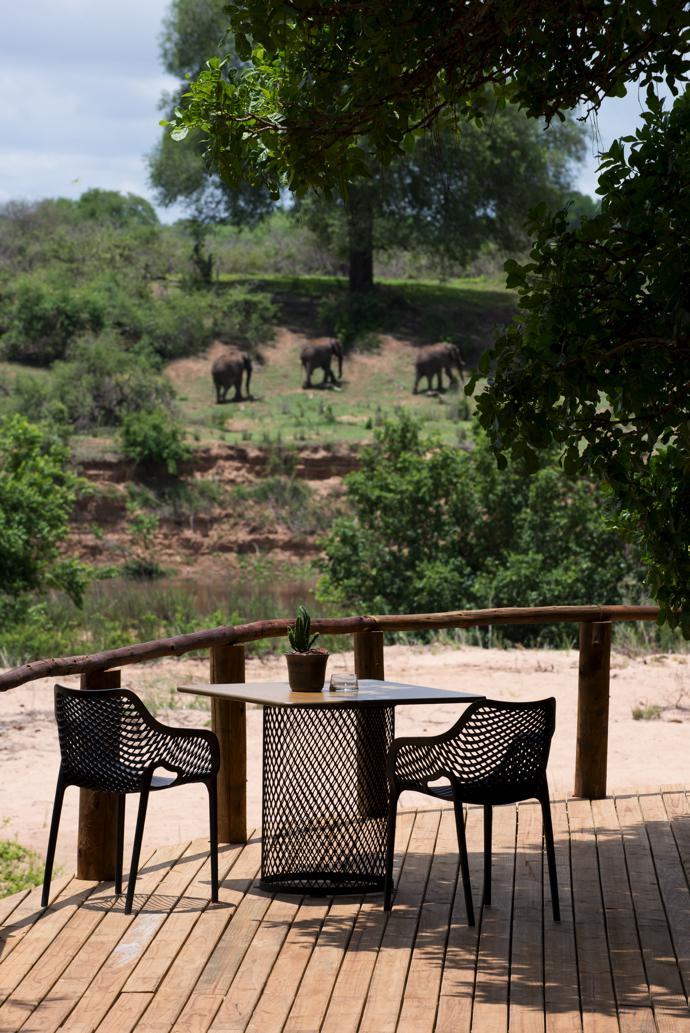 On the main deck, which overlooks the Sabie River, guests can sit in the shade of a towering Natal mahogany tree. The table was custom made by The Noble Collective and the chairs are from Chair Crazy.