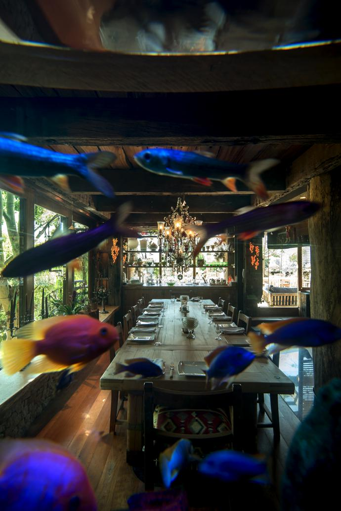 A huge fish tank forms a wall between the living and dining areas.