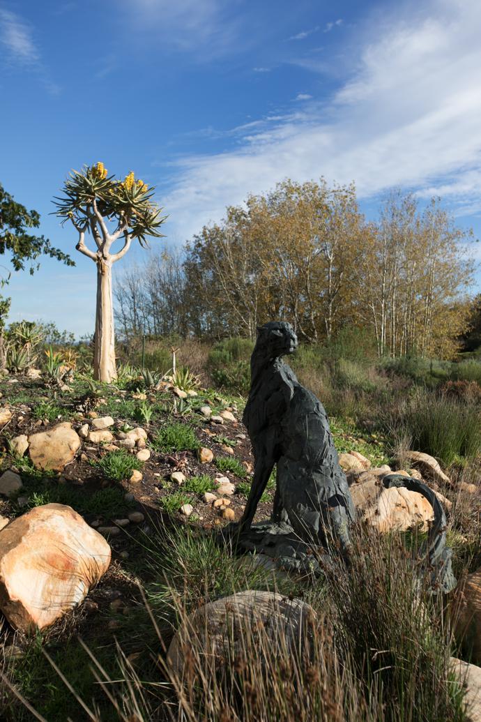 sculpture garden5