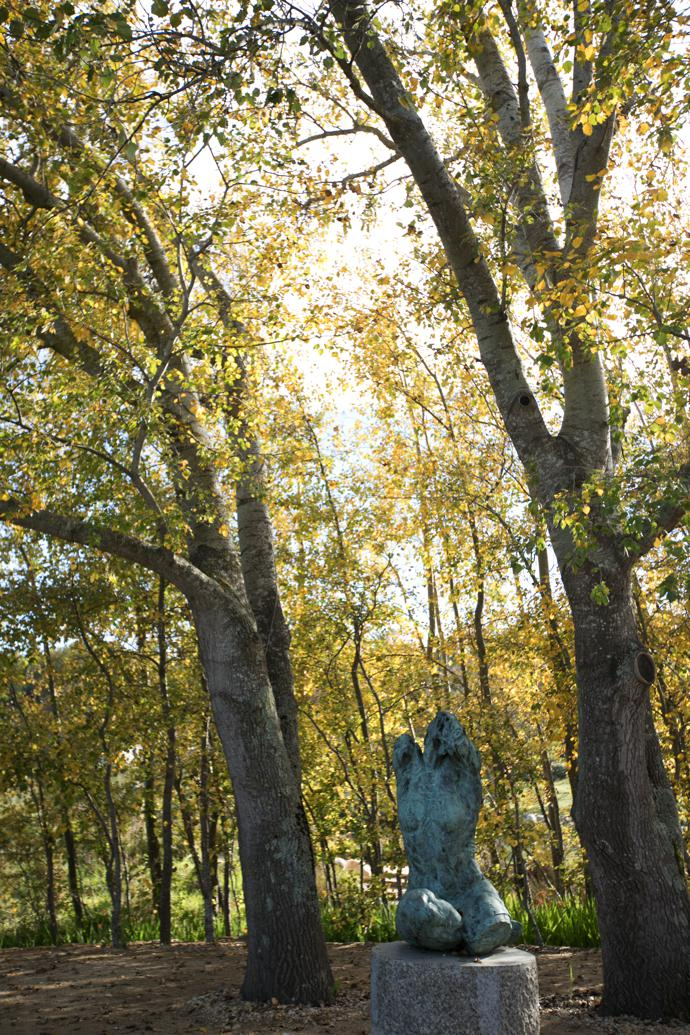 "Torso III rests on a plinth in a poplar grove, where the quietness is almost overwhelming. ""The torso has always fascinated me. There is something beautiful about brokenness – the incomplete, imperfect form, the absence of the head."""