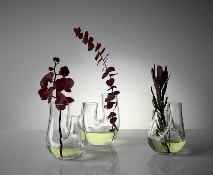 tom dixon plant collection2