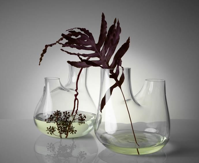tom dixon plant collection3