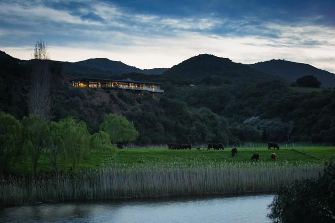 Black Angus cattle graze in the pasture on the banks of the Goukou River below the house, aptly named Heaven's Door. With the lights on in the early evening, it stands out from its natural surroundings, but during the day the bagged brick, stone and glass exterior make the house blend in.