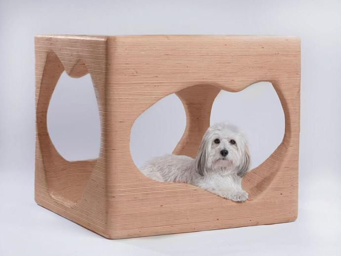 Dog house by Hasan al-Rashid, student at the Architectural Association.