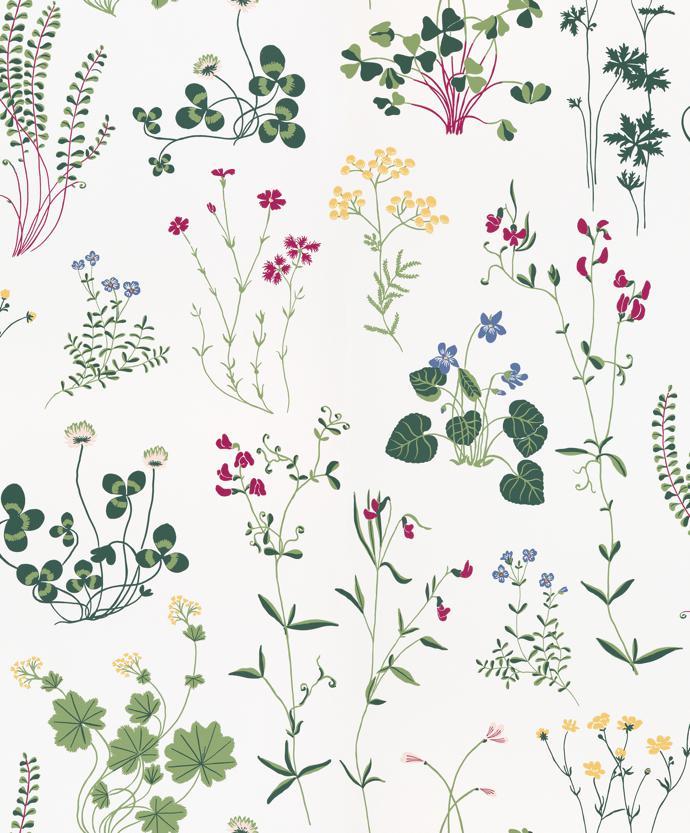 sandberg wallpaper arboretum8