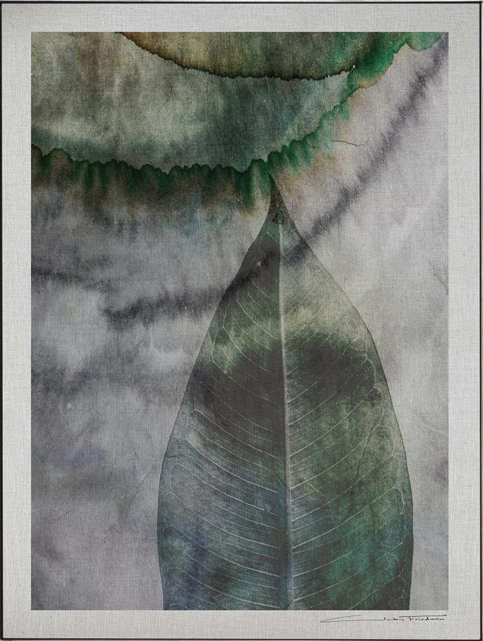 Adenium, 90 cm x 130 cm, limited edition of 30, R8 950.