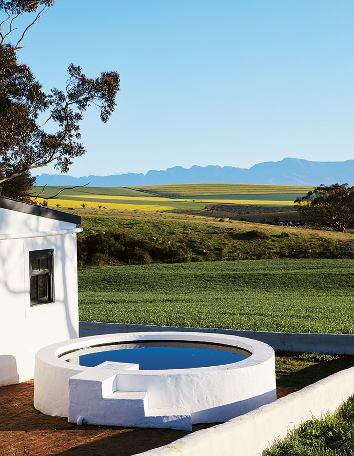 The Overberg landscape forms a picturesque backdrop that changes with the seasons.