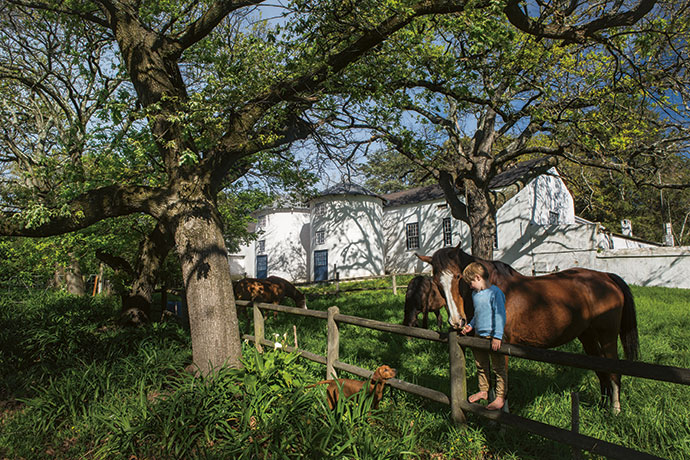 Alex and Sumari's son Henry at play in the garden outside the silos with puppy Eddy and some of the resident retired racehorses.