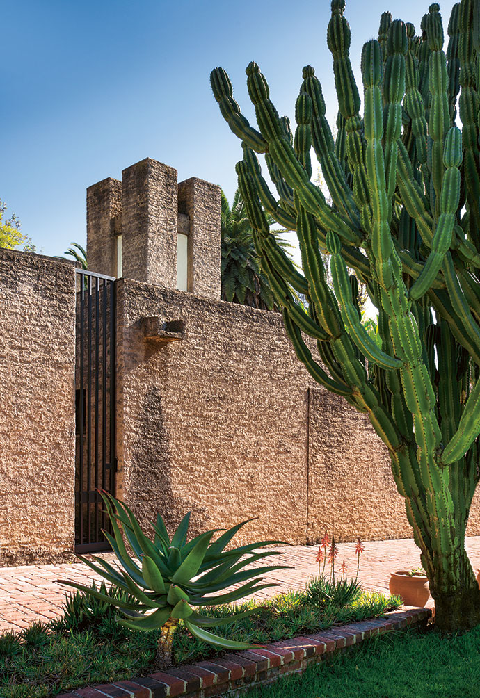 The bold profile of the house is enhanced by the rugged unpainted plaster and offset by sculptural plant forms.